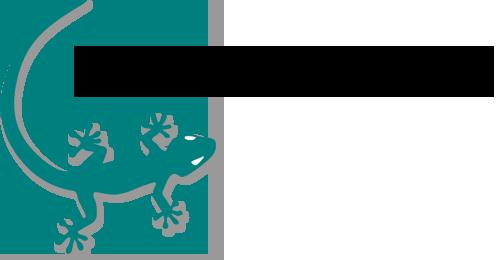 Geko Koolitus